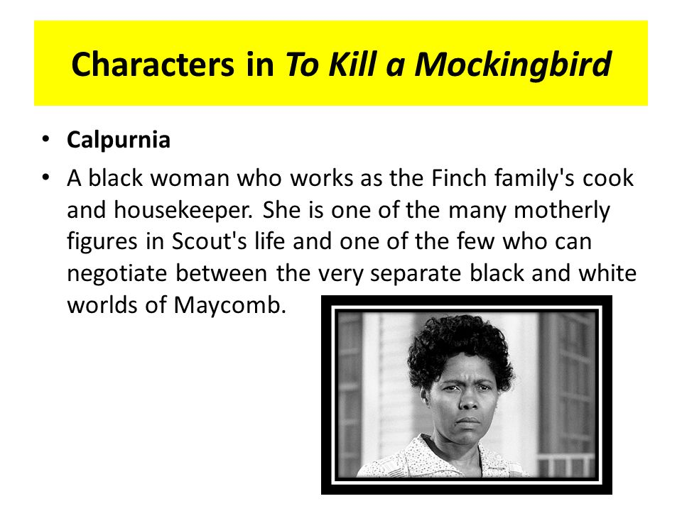 to kill a mockingbird character essay calpurnia Read this literature essay and over 88,000 other research documents to kill a mockingbird to kill a mockingbird is set in the town of maycomb, alabama the story is told through the eyes.
