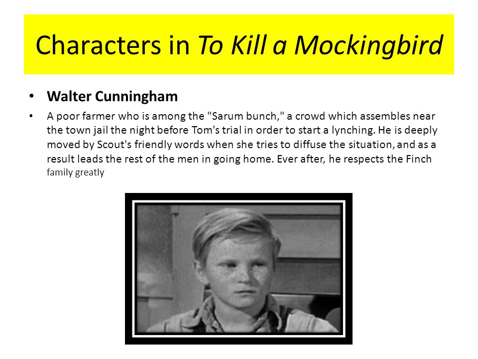 Who is Walter Cunningham in To Kill a Mockingbird