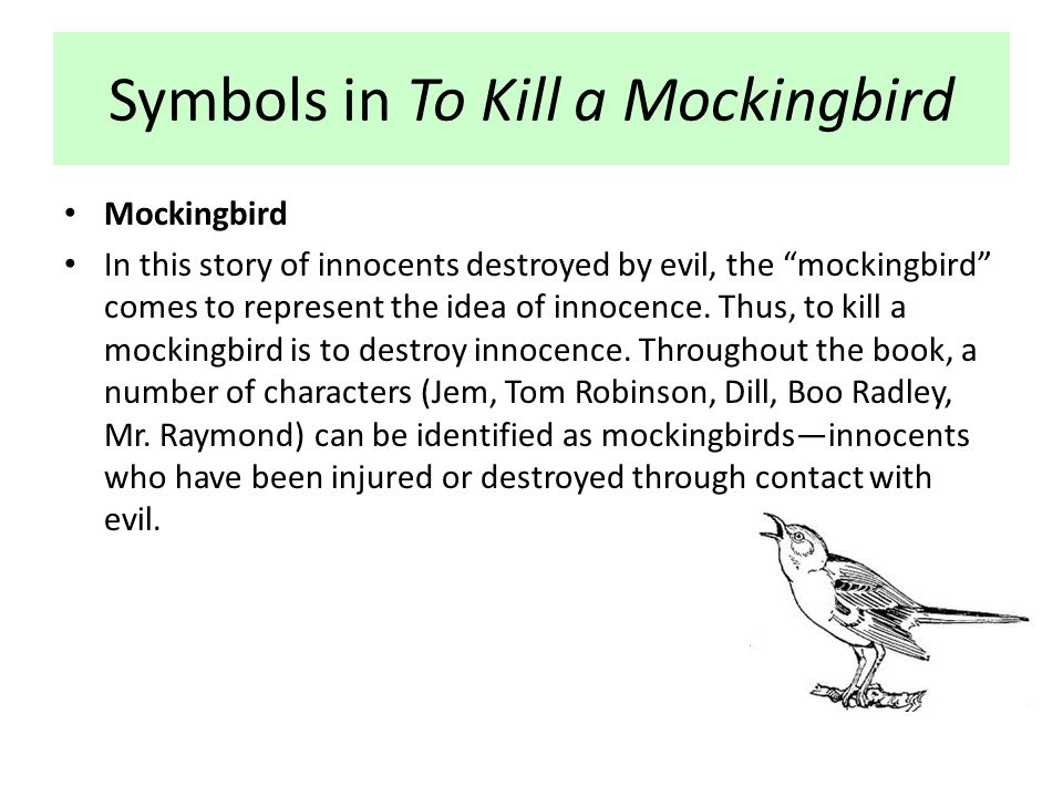 to kill a mockingbird article essay