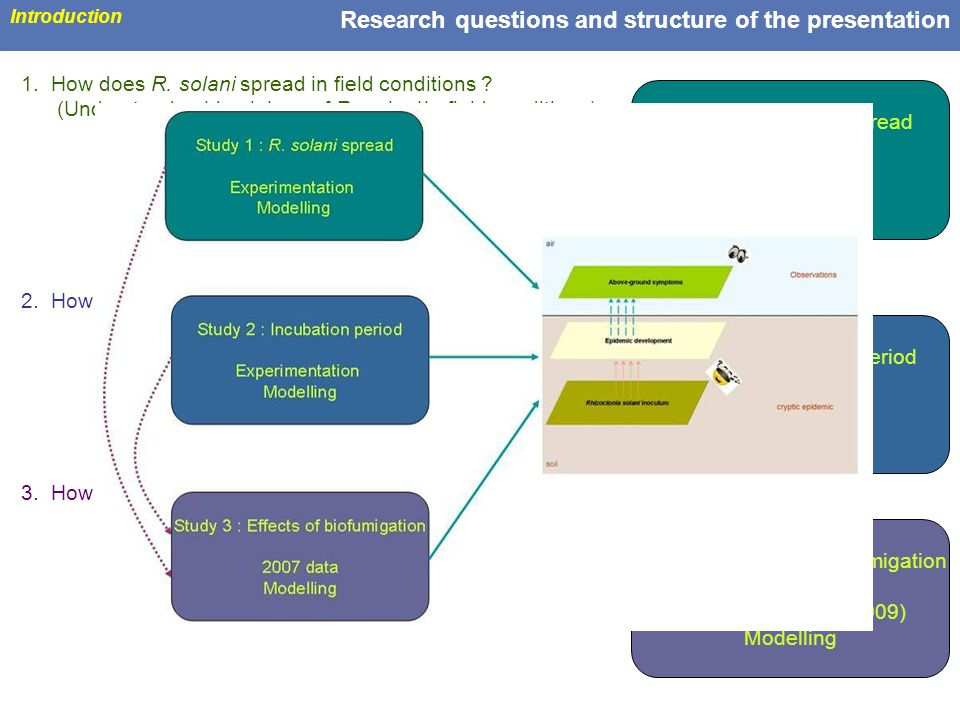 Research questions and structure of the presentation