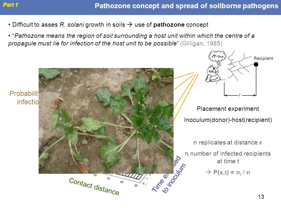 Pathozone concept and spread of soilborne pathogens