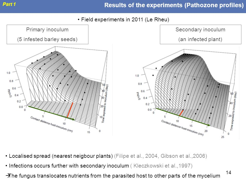 Results of the experiments (Pathozone profiles)