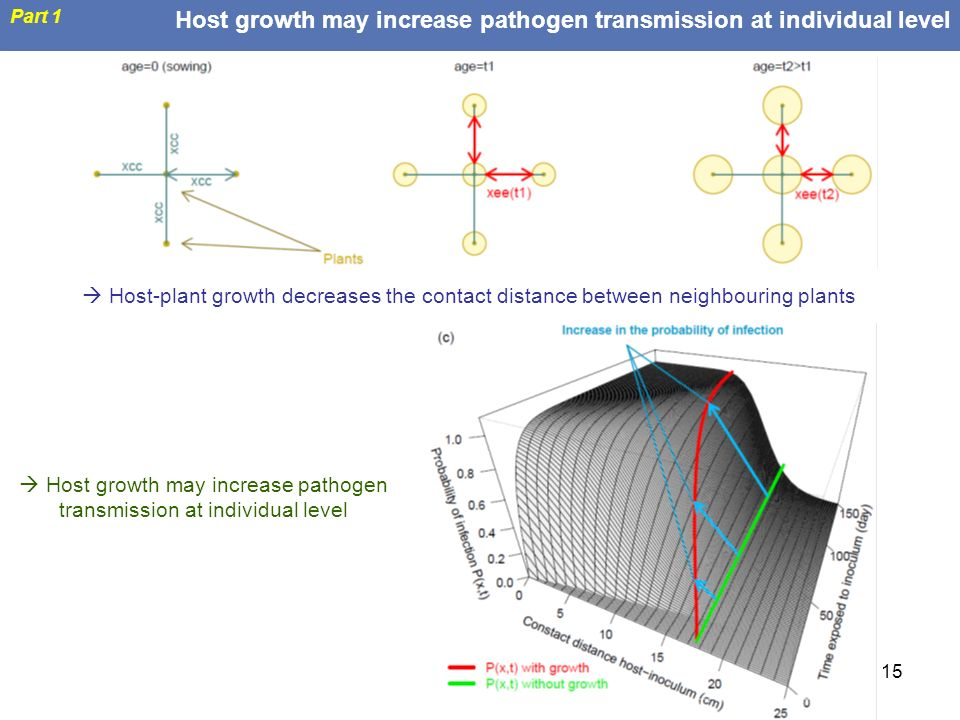  Host growth may increase pathogen transmission at individual level