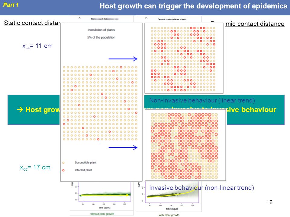 Host growth can trigger the development of epidemics