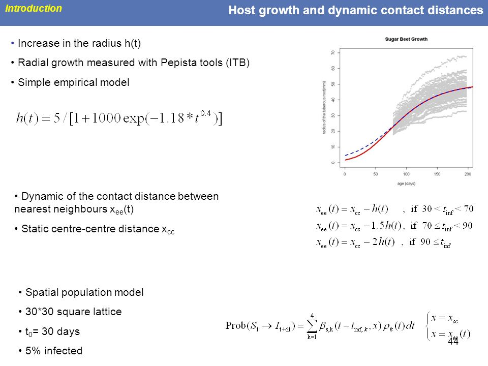 Host growth and dynamic contact distances