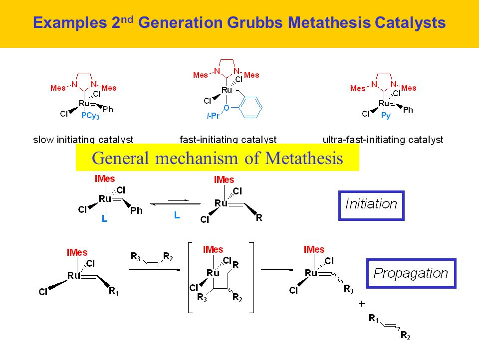 olefin metathesis grubbs catalyst Categories of olefin metathesis: 1 cross metathesis the transalkylidenation of two terminal alkenes with release of ethene is catalyzed by the grubbs catalyst.