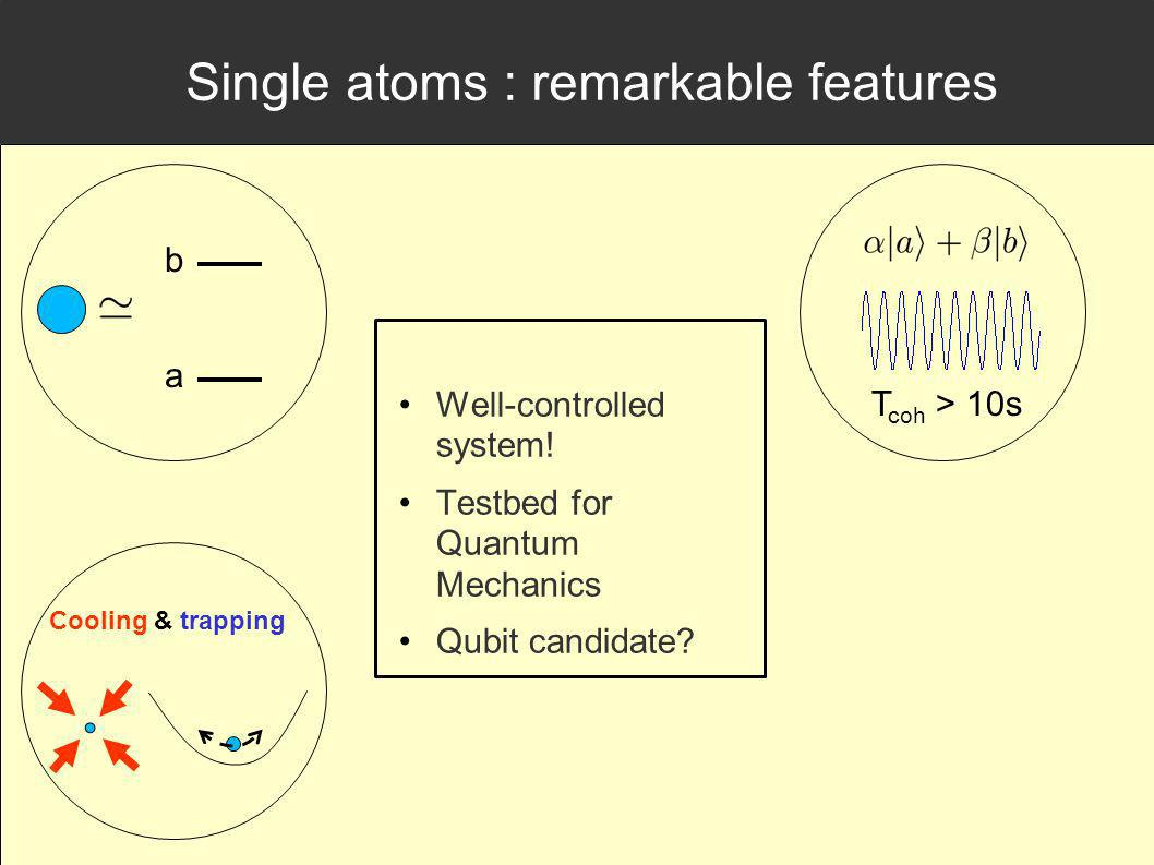 Single atoms : remarkable features