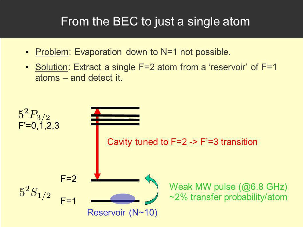 From the BEC to just a single atom