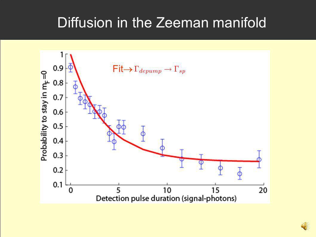 Diffusion in the Zeeman manifold