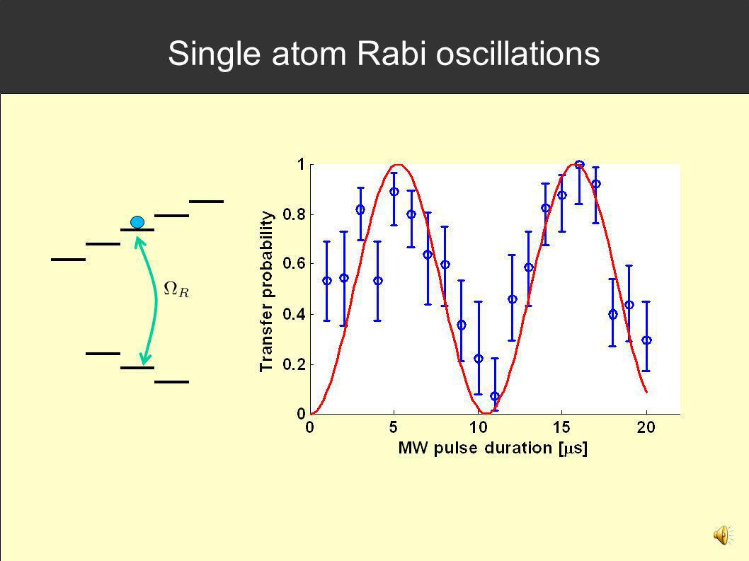 Single atom Rabi oscillations
