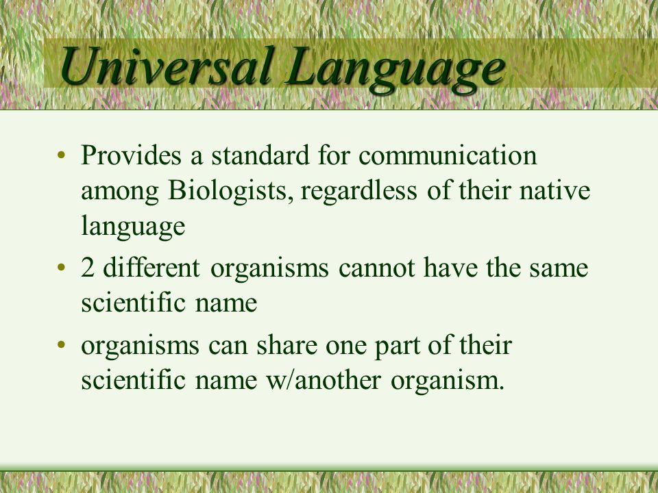 Universal Language Provides a standard for communication among Biologists, regardless of their native language.
