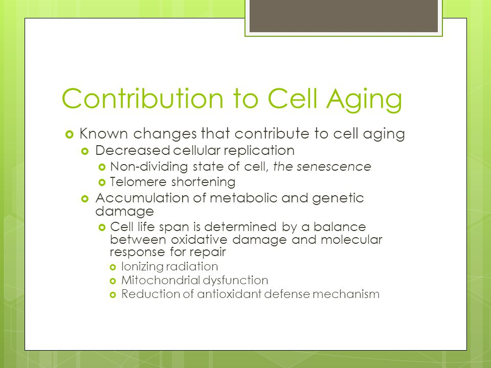 Contribution to Cell Aging