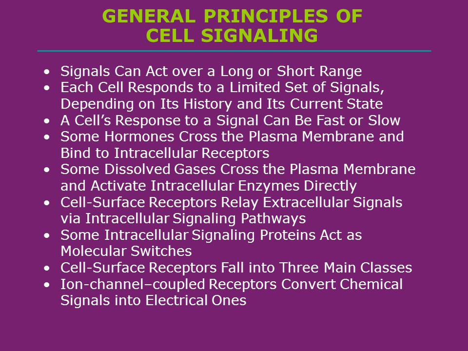 general signaling principles Explanations of signal design must meet three requirements: they must be logically coherent, they must explain the diversity in size of animal signals and they must explain the diversity in form of signals three selection pressures operating on animal signals are discussed: the degree of conflict .