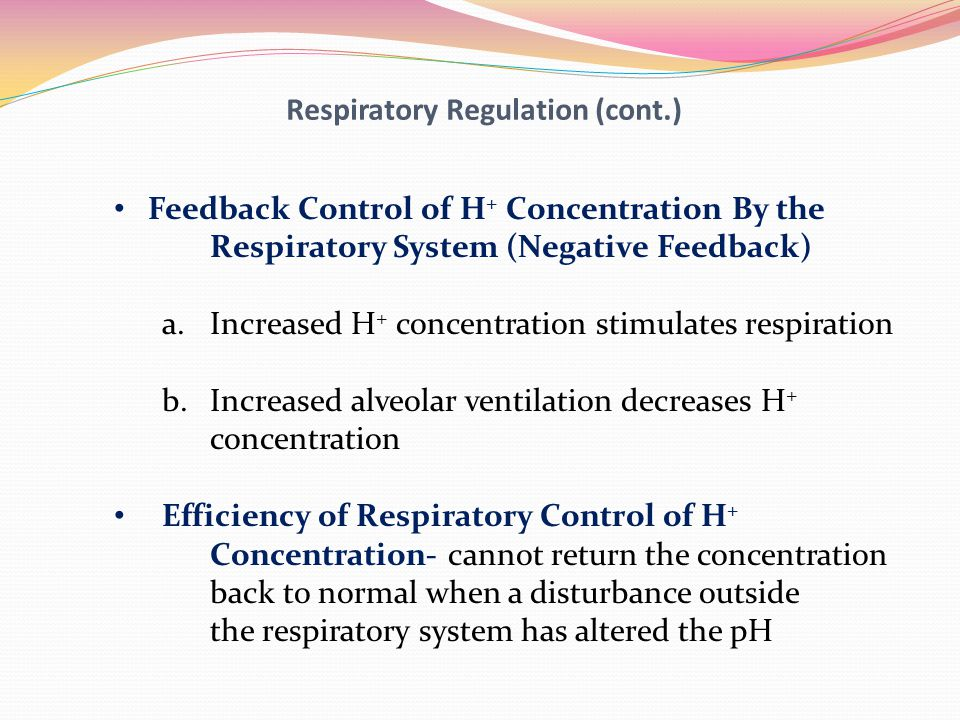 Respiratory Regulation (cont.)