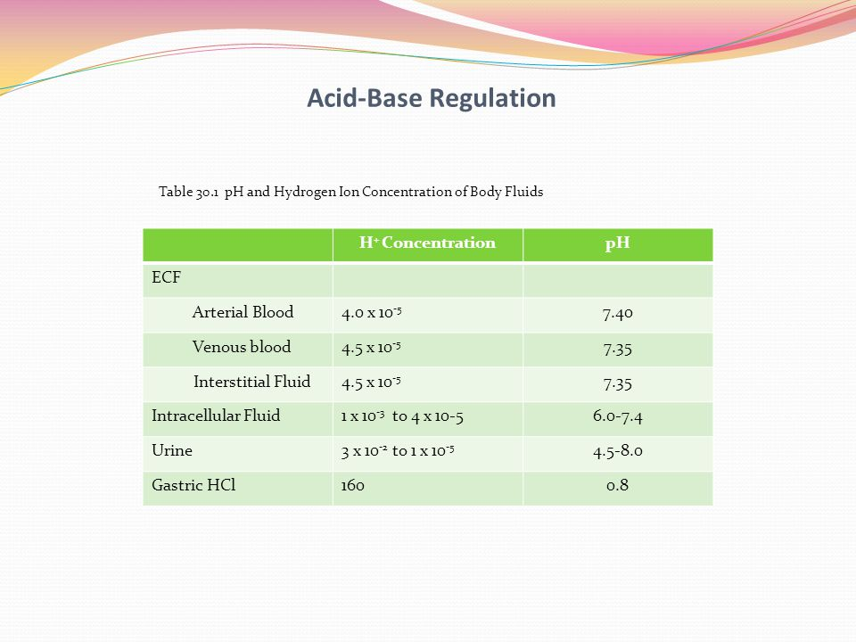 Acid-Base Regulation H+ Concentration pH ECF Arterial Blood 4.0 x 10-5