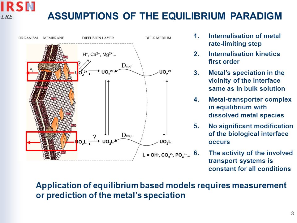 ASSUMPTIONS OF THE EQUILIBRIUM PARADIGM