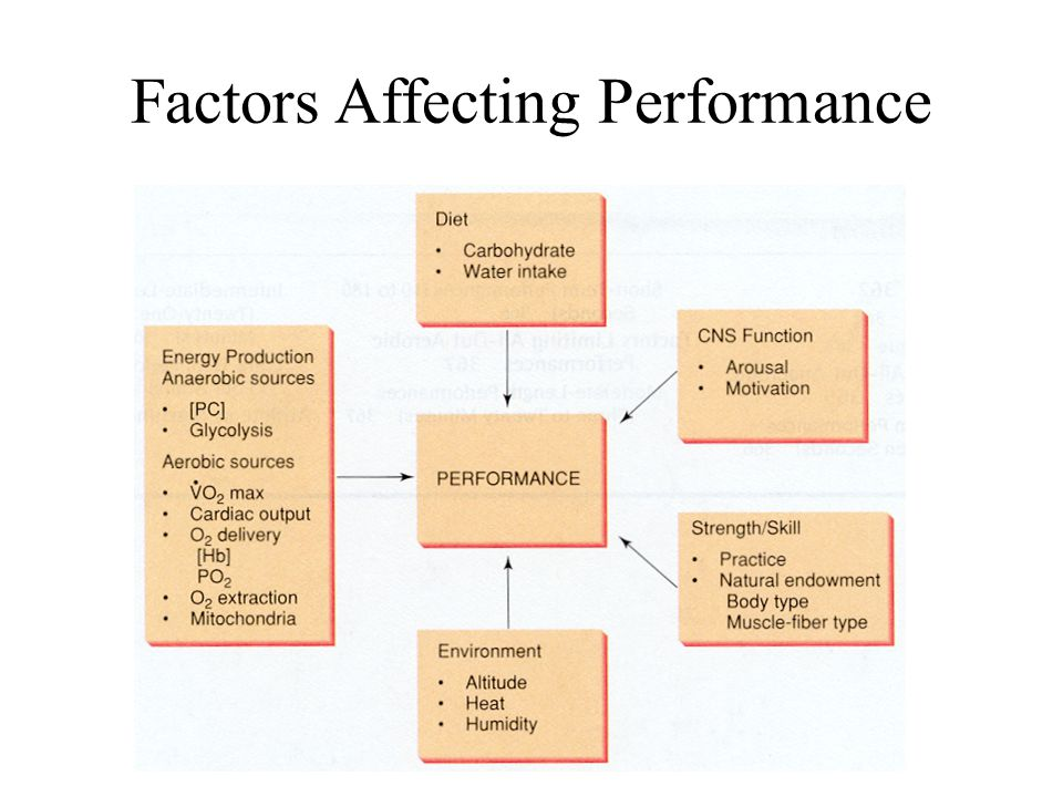 factors affecting 3 essay Environmental factors that affect physical activity (primarily.