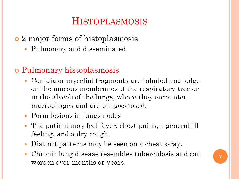 Histoplasmosis 2 major forms of histoplasmosis