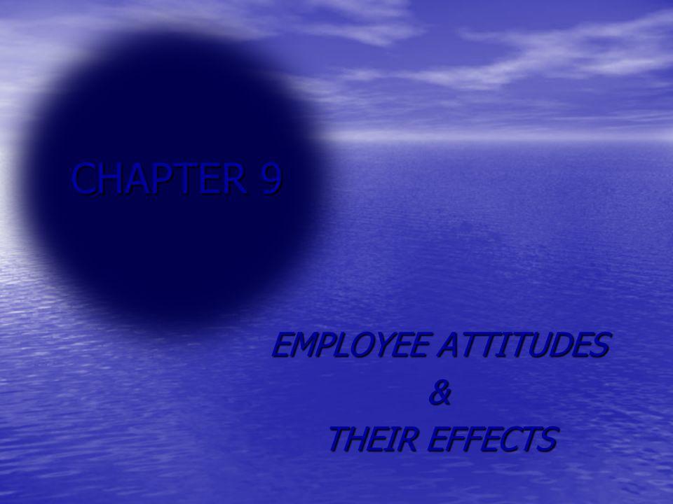 EMPLOYEE ATTITUDES & THEIR EFFECTS