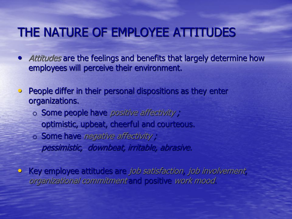THE NATURE OF EMPLOYEE ATTITUDES