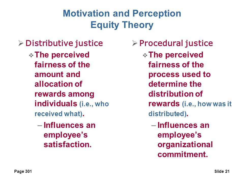 Motivation and Perception Equity Theory