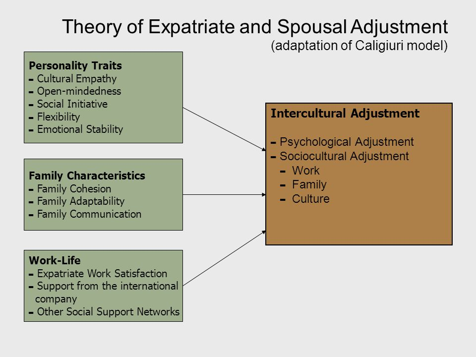 the psychology of personal adjustment and social adjustment essay This study aims at testing whether the mediation of separation-individuation between the relationship of secure parental attachment and personal and social adjustment for a late adolescent is effective or not in turkish culture.