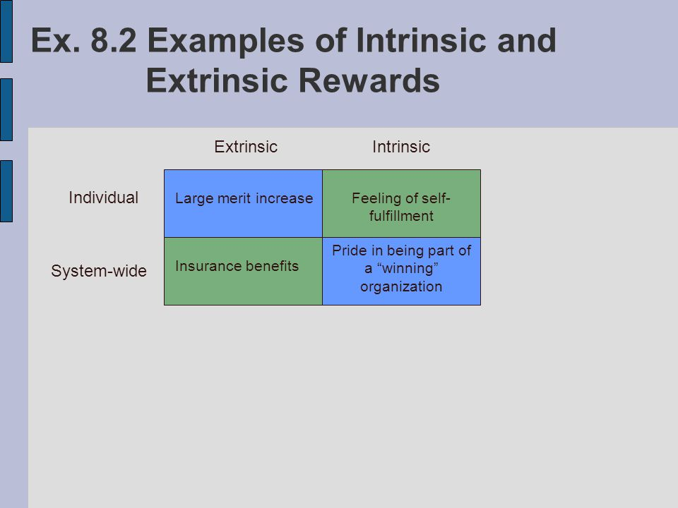 Intrinsic and Extrinsic Rewards with Examples