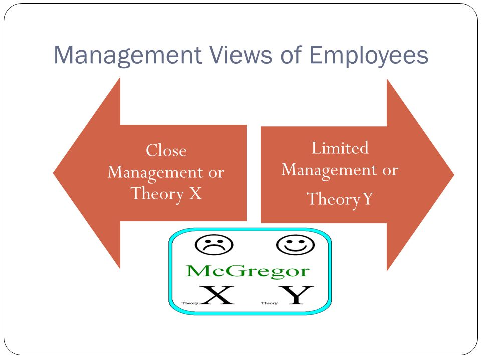 Management Views of Employees
