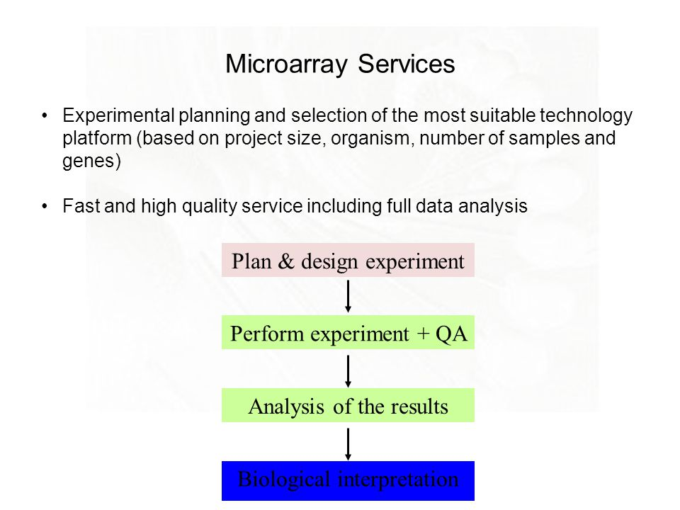 Microarrays pauliina munne ppt video online download for How to plan and design an experiment