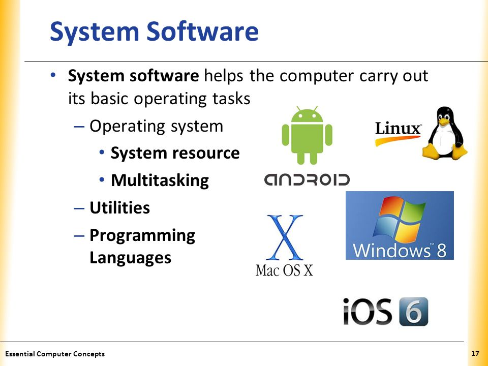 System Software System software helps the computer carry out its basic operating tasks. Operating system.