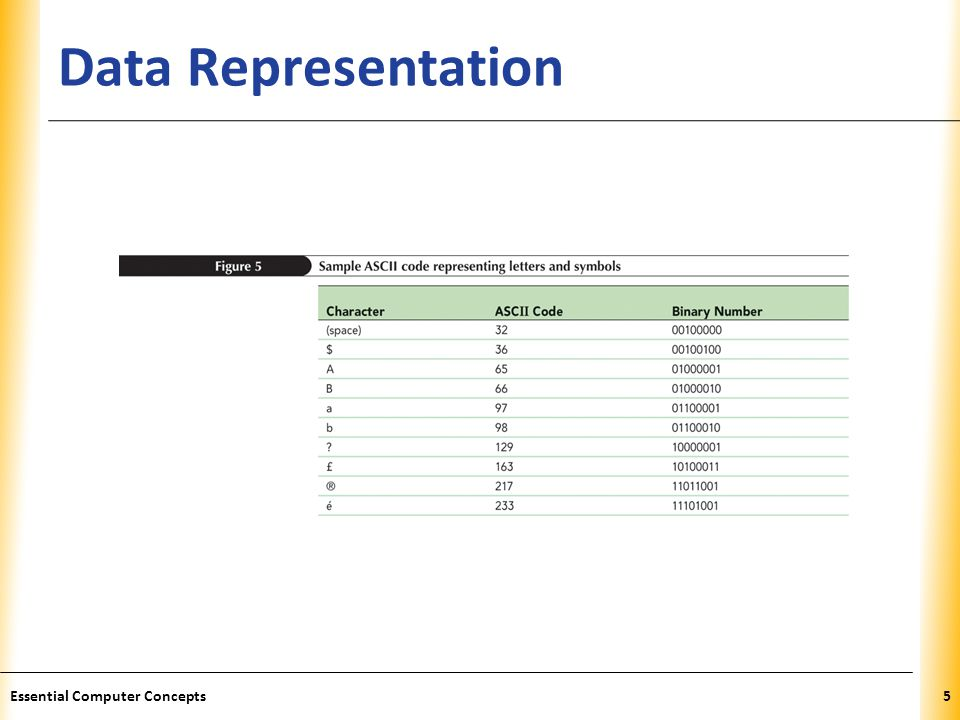 Data Representation Essential Computer Concepts