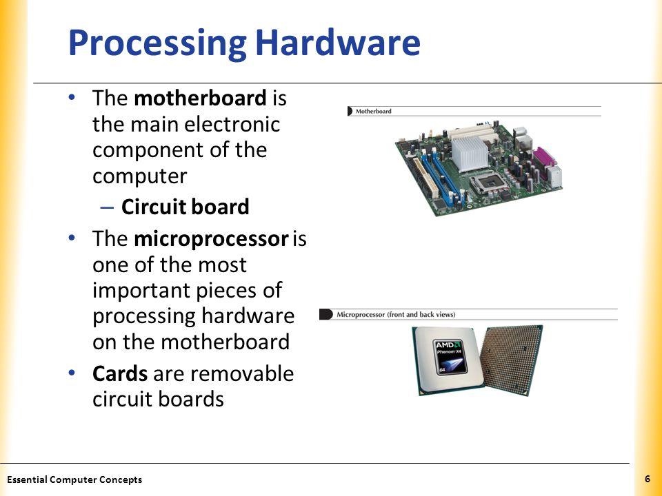 Processing Hardware The motherboard is the main electronic component of the computer. Circuit board.