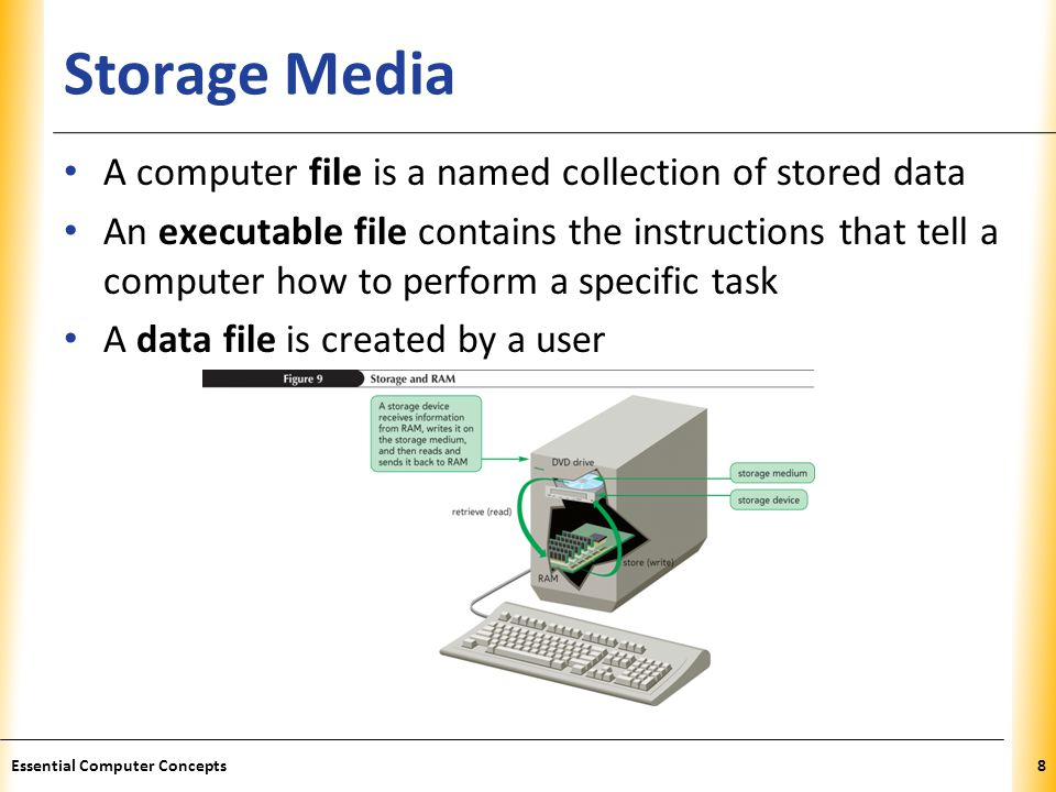 Storage Media A computer file is a named collection of stored data