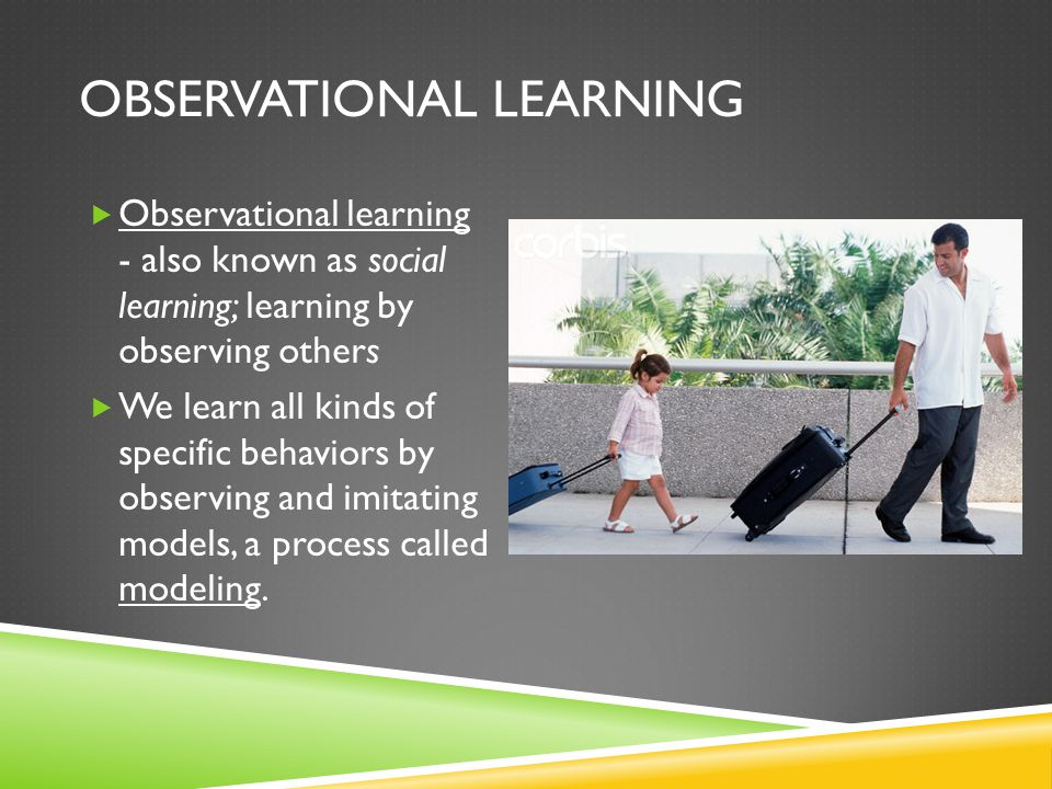 Examples of Observational Learning