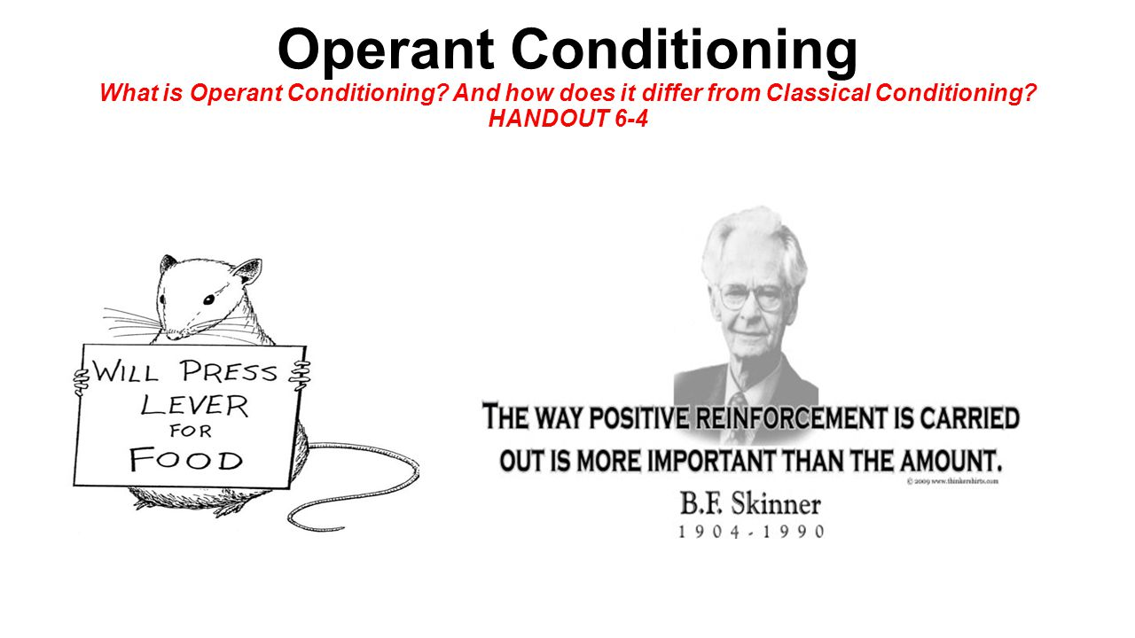 understanding the classical conditioning and operant conditioning Classical conditioning assignment--40 pts 1) explain how you would classically condition a behavior in an organism: dog, cat, bug, brother / sister etc.