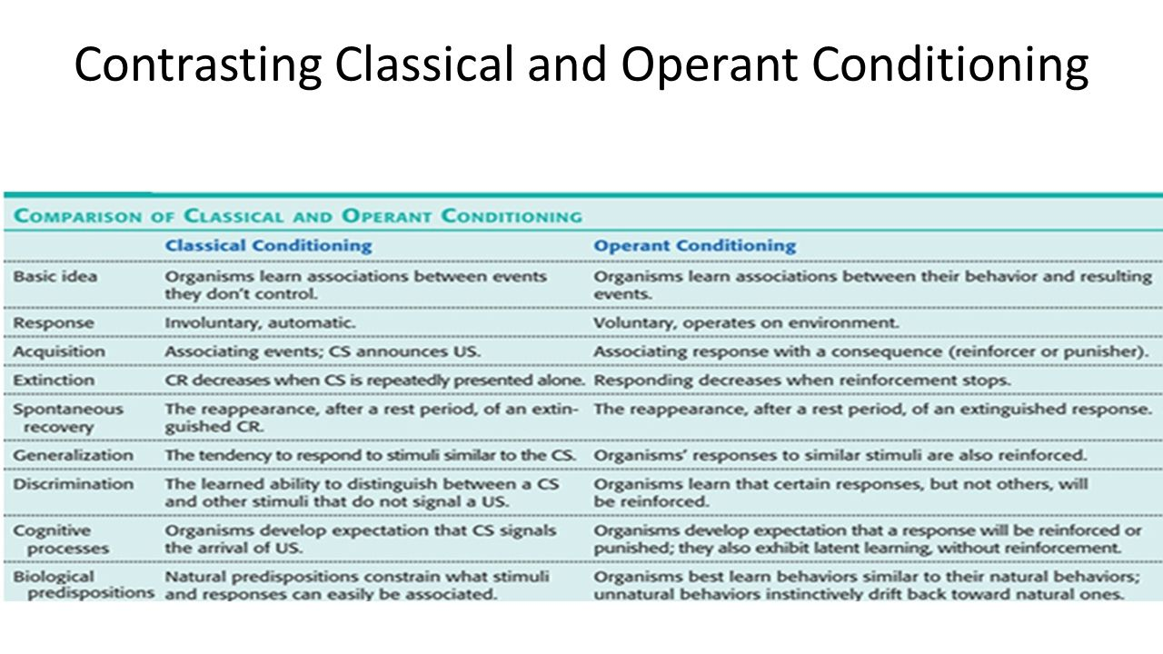 difference between classical and operant conditioning essay Urgent essay help-compare and contrast classical and operant conditioning how are they similar how are they different compare and contrast classical and operant.