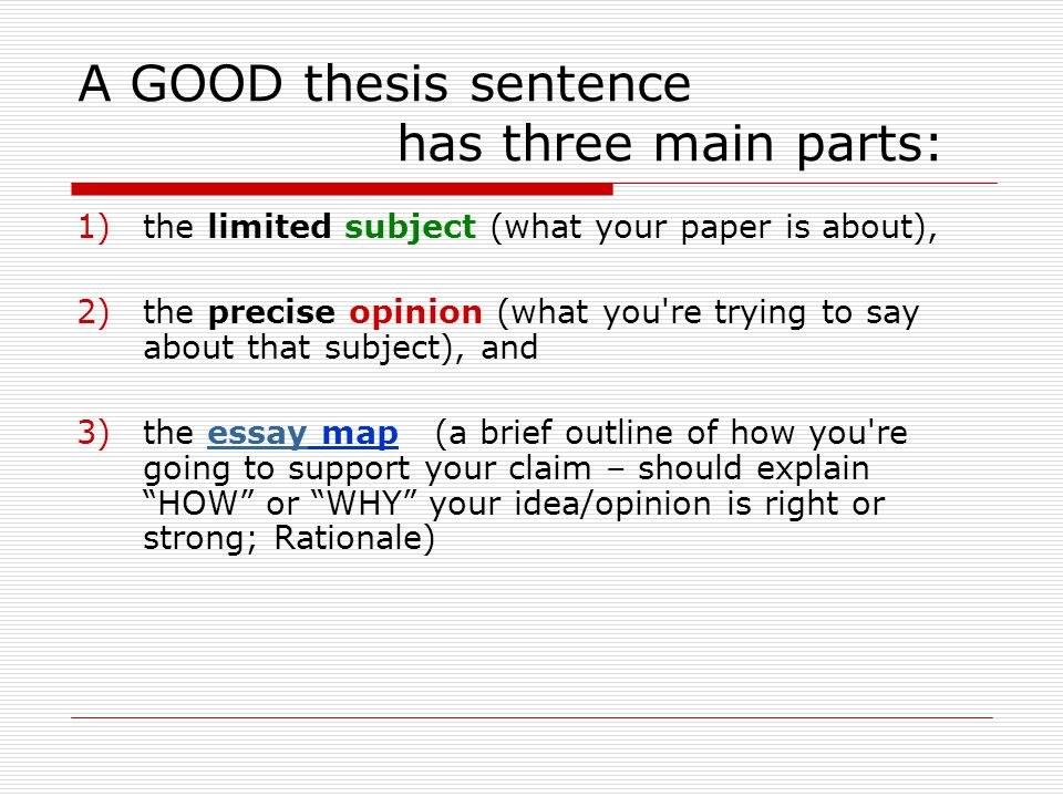 What are some important components of a good essay