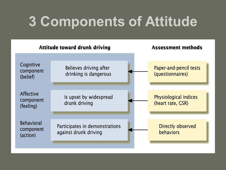 attitude formation affective and cognitive factors psychology essay Start studying social psych test 2: cognitive dissonance / attitudes / conformity learn vocabulary, terms, and more with flashcards, games, and other study tools.