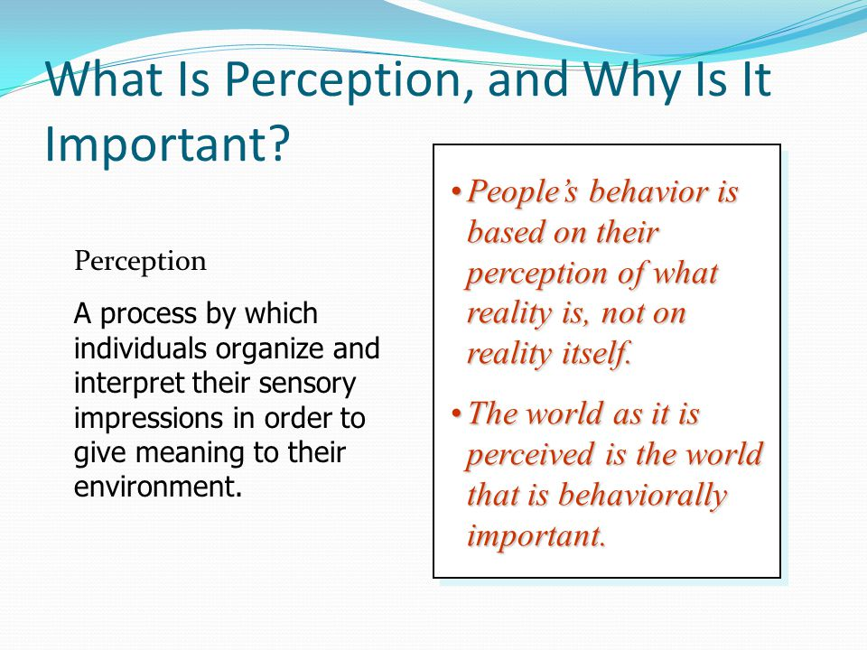 What significance do perception and sensation have on human behavior?