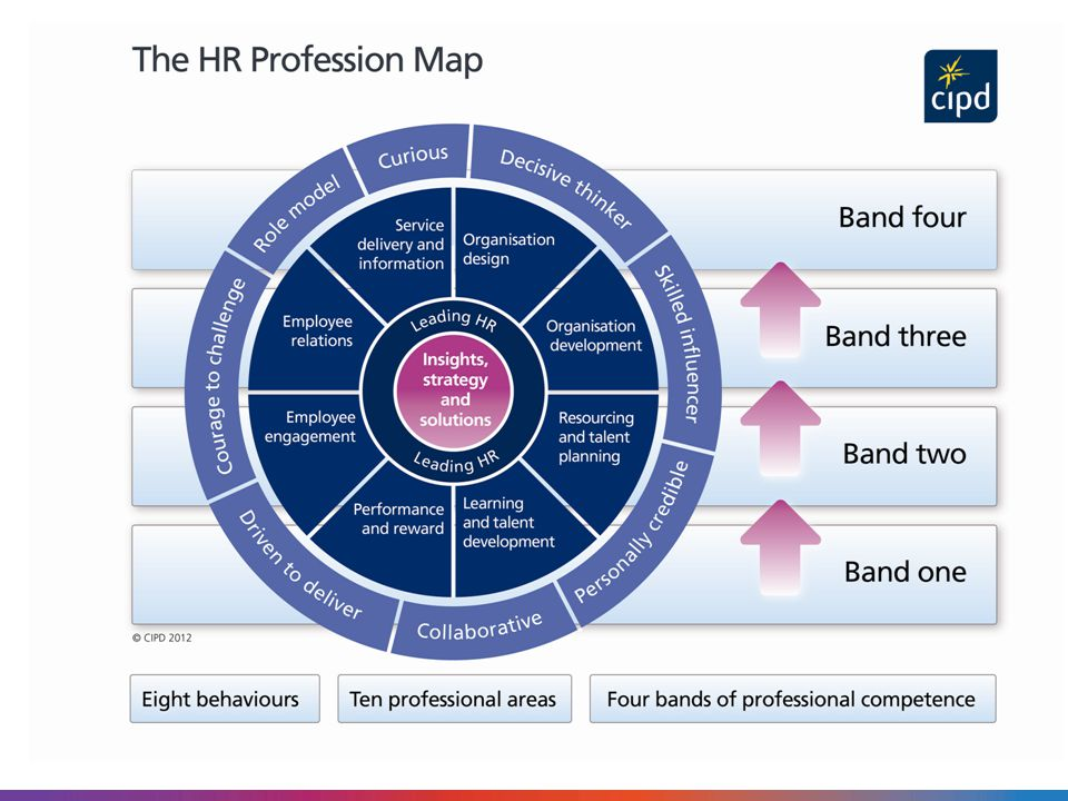the three competencies of an hr manager