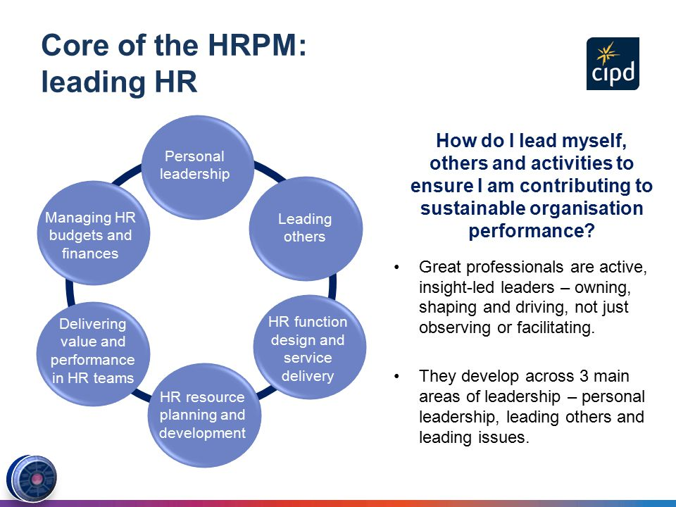 the two core areas of the hr profession map The rapidly transforming business landscape means that there are currently many human resource management challenges which will since this is generally not a focal point for hr professional training as with many other areas of business, this profession also needs to be able to.