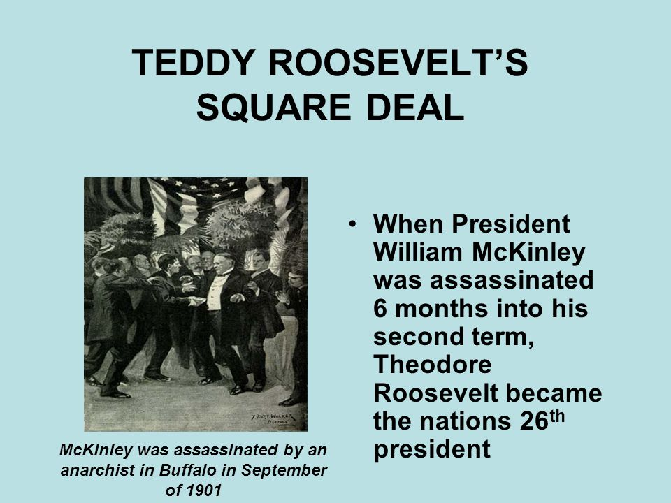theodore roosevelt proposed the square deal to