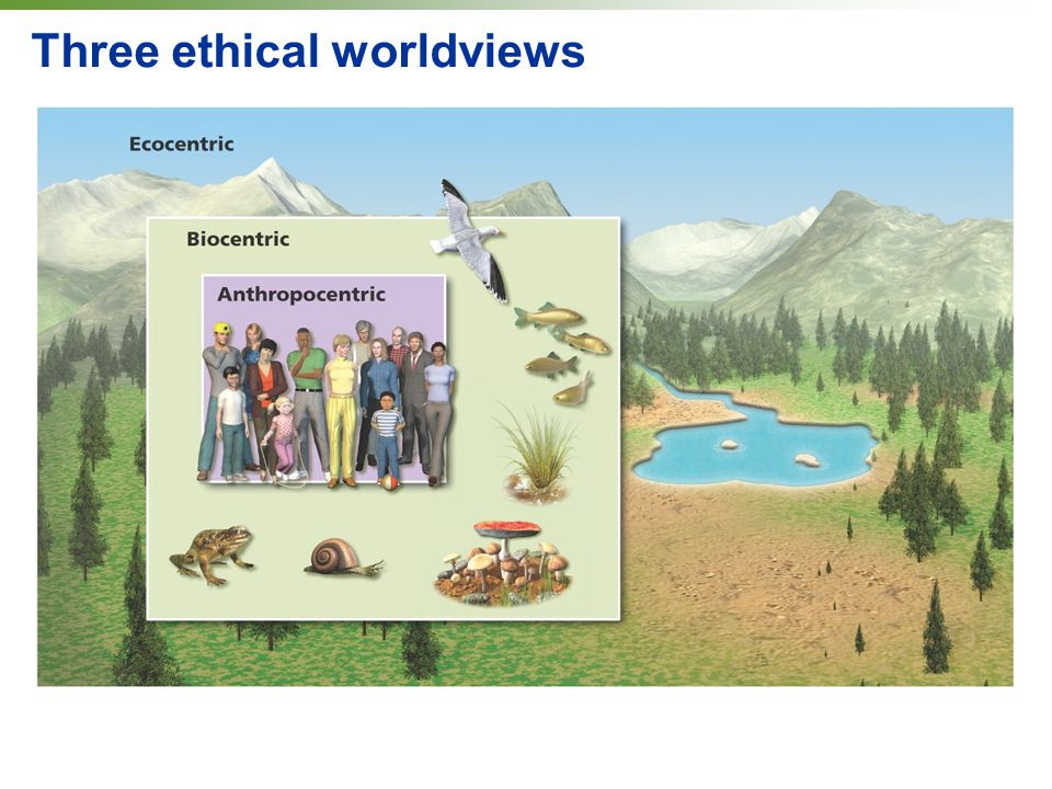 ethics and worldviews Core case s tudy environmental worldviews, ethics, and sustainability biosphere 2 a lesson in humility in 1991, eight scientists (four men and four women) were sealed.
