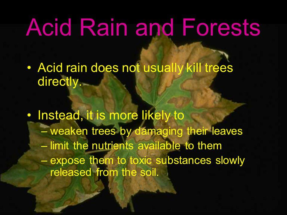 effect of acid rain on soil pdf
