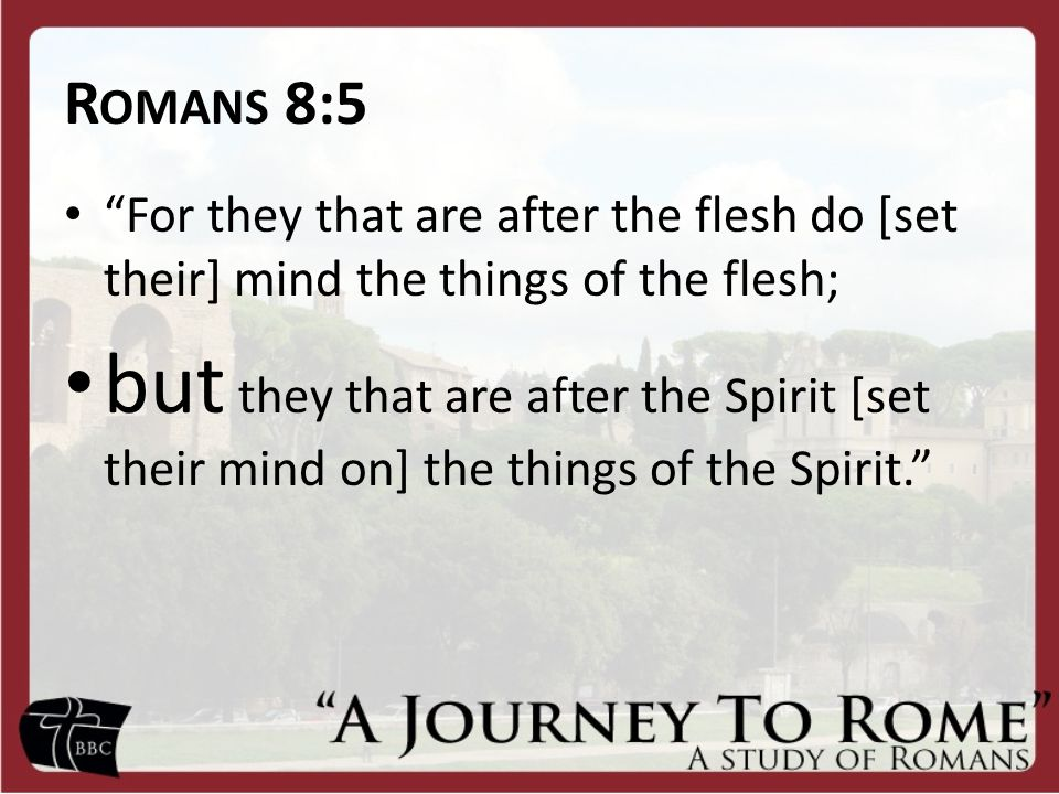 Romans 8:5 For they that are after the flesh do [set their] mind the things of the flesh;