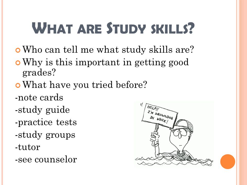 What are Study skills Who can tell me what study skills are