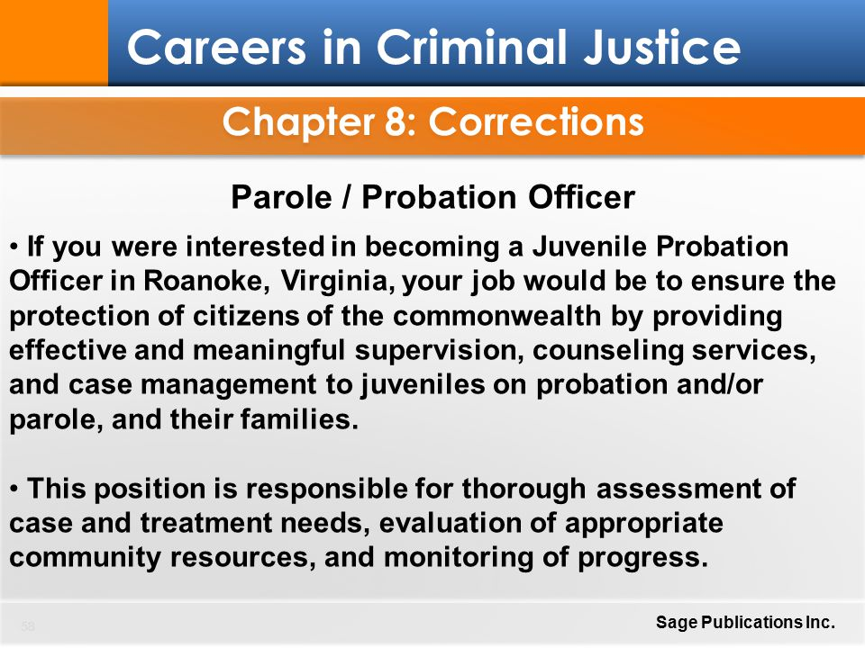 a probation officers view of effectiveness A probation officer's view of effectiveness a probation officer's view of effectiveness there are two distinct sets of interests that were served by the.
