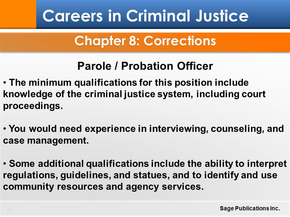 integrity issues in the criminal justice for probation officers essay Correctional officers have to have integrity in order to conduct themselves in a professional manner the role of integrity in criminal justice work 3.