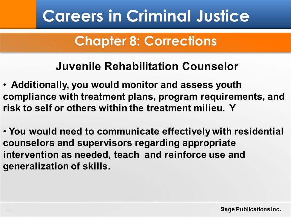 justice chapter 8 corrections juvenile rehabilitation counselor