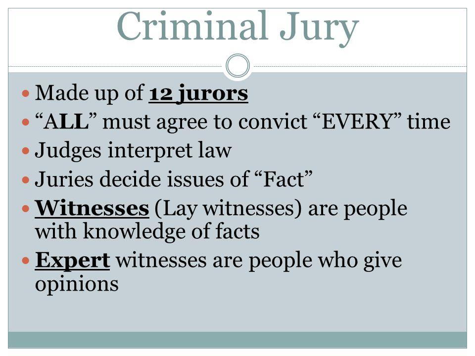 Criminal Jury Made up of 12 jurors